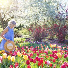 Een tuinafval container huren om uw tuin zomerklaar te maken